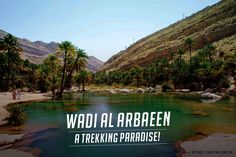 Wadi Al Arbaeen is the place for you if you want to experience an adventurous road trip nearby Muscat. It possess beautiful deep gorges, pools and serene waterfalls and is a paradise for trekkers and hikers. #Oman #Travel #TravelLovers #WadiAlArbaeen