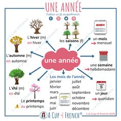 Learn French Videos Food How To Learn French Hair Style Product Basic French Words, French Phrases, How To Speak French, Learn French, French Language Lessons, French Language Learning, French Lessons, French Flashcards, French Worksheets