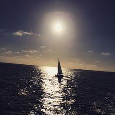 Dave Storm @davestorm1980 #sailing #home #Terschelling with #msfriesland #rederijdoeksen
