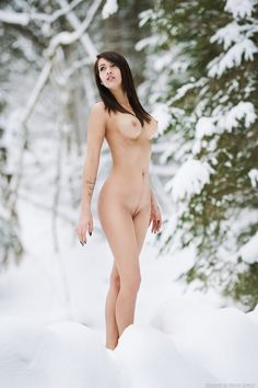 Фотография From the deep winter forest автор Franz S. на 500px