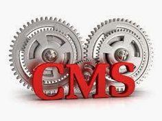 Web Development Company in Hyderabad - Sagabiz Solutions: Choosing the Best CMS – Saga Biz Solutions