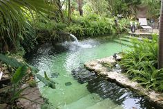 Everglades International Hostel is an eco friendly accommodation in Florida City, right in the Florida Everglades. It boasts private rooms and dorms, pools and waterfalls and award-winning tours of the parks.