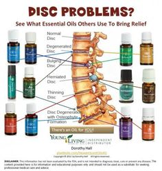 Young Living essential oils for your spine. Learn more about oils at www.theoilessentials.com.