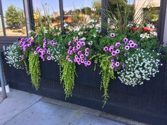 Planting the balcony box, # planting the balcony box .- Balkonkasten bepflanzen, Planting a balcony box, - Window Box Flowers, Balcony Flowers, Outdoor Flowers, Outdoor Plants, Flower Boxes, Window Boxes, Balcony Planters, Window Planters, Flower Planters
