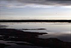 1982- Francia La Camargue uno dei delta piu' belli del Mediterraneo