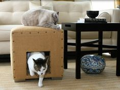 """Cat Livin, the folks behind The Climber Cat Tree have teamed up with custom furniture maker Viesso to offer durable furniture that can withstand """"feline"""" abuse""""... Enter Cat Cubes: covered in sisal & customizable in 8 color choices & 18 various leg choices. Cubes come in 18"""" or 27"""" & prices start at $345 for a basic cube w/ no legs."""