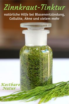 Tinktur mit Ackerschachtelhalm – Hilfe bei Blasenentzündung, Akne, Cellulite und vielem mehr The putative weed horsetail has many healing properties and may e. help with cellulite, cystitis and acne. Causes Of Cellulite, Cellulite Cream, Cellulite Remedies, Reduce Cellulite, Dry Skin Remedies, Health Remedies, Natural Remedies, Herbal Remedies, Natural Skin Care