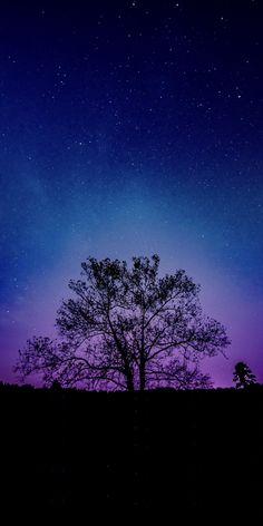 Tree galaxy sky silhouette 10802160 wallpaper – Best of WallPaper – wallpaper 2160x3840 Wallpaper, Night Sky Wallpaper, Scenery Wallpaper, Aesthetic Pastel Wallpaper, Pattern Wallpaper, Wallpaper Quotes, Purple Galaxy Wallpaper, Galaxy Wallpaper Iphone, Wallpaper Samsung