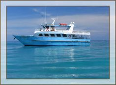 Key West Florida- First stop on our Honeymoon cruise.  We went on a glass bottom boat tour.