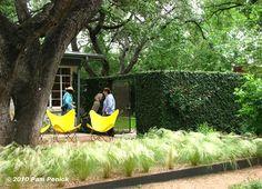 Austin Landscape Architect Christy Ten Eyck's home - courtyard