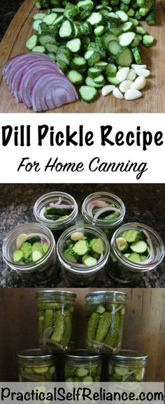 DIY Food Preservation Tips and Recipes : Dill Pickle Recipe for Home Canning - DIY Loop Best Pickles, How To Make Pickles, Canning Pickles, Canning Tips, Home Canning Recipes, Homemade Pickles, Pickles Recipe, Pickling Cucumbers, Pasta