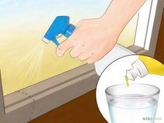 How to Kill Ants without Pesticides via wikiHow.com