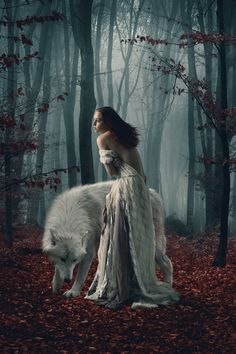 Save Gray Wolf, buy quality products and provide wolf sanctuary! - 🐺💕💃🏻Wolves and Women Images? to explore awesome wolf decor, - Angry Wolf, Fairy Tale Forest, Wolves And Women, Female Demons, Chantal, Wolf Spirit Animal, Wolf Images, Cute Workout Outfits, Baby Painting