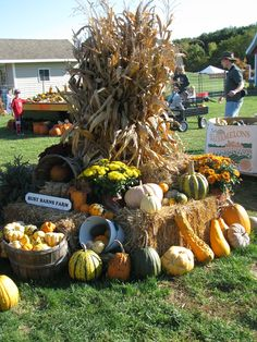 Nice 88 Best Ways To Decorate Garden Carts For Fall Ideas. With outdoor entertaining on the rise and more people choosing to stay home instead of taking expensive vacations, we all […] Fall Festival Decorations, Fall Festival Games, Fall Decorations, Fall Festivals, Harvest Festivals, Fall Games, Pumpkin Display, Autumn Display, Fall Displays