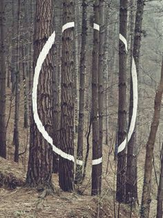Circle land art Hoop tree The Forest of Oma, Basque Country Land Art, Sculpture Art, Sculptures, Outdoor Sculpture, Art Environnemental, Street Art, Instalation Art, Basque Country, Environmental Art