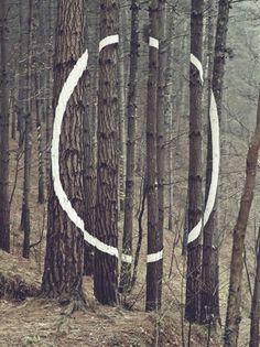 """1985 - """"El Bosque de Oma"""" - AGUSTiN IBAROLA //"""