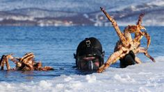 King crab safari in Kirkenes, Norway - Photo: visitnorway.com/Chris Lorang Arnesen