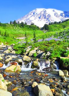 Best Places to Camp in Washington State ... Mount Rainier on here, we could visit the Bests'  (miss them!)