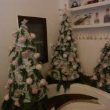 """#Concorso #GreenMarathonTappa 5 #Natale #Green Angela: """"Ogni anno su una base di rete metallica formata a cono con ovatta ho creato rose,stelle foglie ed ecco il mio #albero di #natale."""""""