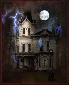 The Whimsey Asylum...