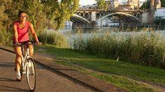 Sevilla es la ciudad con mejores vías ciclistas de España, según los usuarios