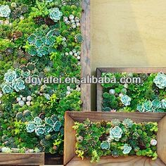 #new design small smart artifical  plant/shrub/grass wall, #vertical artificial outdoor plant wall, #diy plant wall
