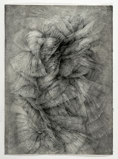 anne judell Ap Drawing, Mark Making, Art Forms, Printmaking, Lion Sculpture, Contemporary, Black And White, Patterns, Drawings