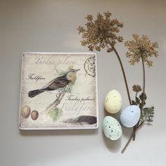 Happy Easter! #cherishandrelish_march #mystillsundaycompetition #embracingspring #sundaysundries #naturally_imperfect #makeseasonallight #thelittlethings #pressedflowers #flatlay #easter #chasinglight #alittlebeautyeveryday #vscocam