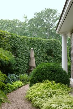 There is, in fact, a putting green—well hidden behind enormous boxwoods—where Barry himself unwinds. The rest of the three-acre property is both Moss's respite and her constant project.Hornbeam, hostas, variegated grasses, hellebores. Obelisk, Haddonstone.    - Veranda.com
