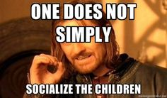 One does not simply socialize the children...