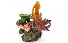 Rocks & Coral - Karkinos Artificial Living Coral is an ideal Aquarium Decoration. This Replica Reef Coral is ideal for any aquarium.Karkinos Artificial Living Coral - Our Karkinos Artificial Living Coral is an ideal Aquarium Decoration.