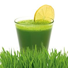 Wheatgrass is a nutrient-rich type of young grass in the wheat family. It's sold as a dietary supplement in tablet, capsule and liquid forms. Wheatgrass is often used for juicing, or added to smoothies or tea.