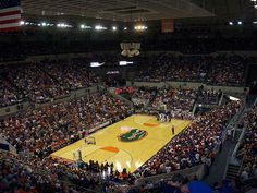 University of Florida's Stephen C. O'Connell Center is the home arena of the Florida Gators men's basketball team. Description from greatdegree.com. I searched for this on bing.com/images