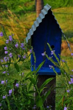 Blue beauty bird house with tin roof.