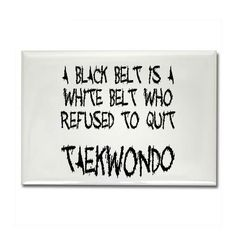 Tae Kwon Do...pumped to be doing this with my boys!