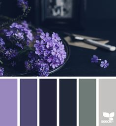 { color setting } image via: @beverlylcazzell_lavenderbleu