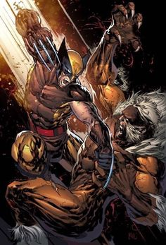 v Sabretooth by Ken Lashley Wolverine v Sabretooth by Ken Lashley - (disambiguation) A wolverine is a stocky and muscular carnivorous mammal that resembles a small bear. Wolverine may also refer to: Wolverine Comics, Wolverine Images, Arte Dc Comics, Marvel Comics Art, Bd Comics, Marvel Heroes, Comic Book Characters, Marvel Characters, Comics