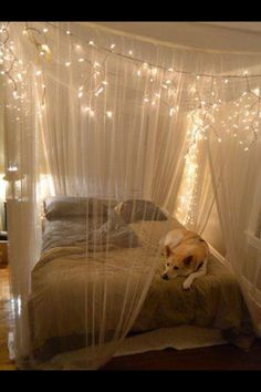 Canopy Bed - love the look