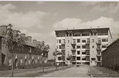 david zuiderhoek, Bomenbuurt, Vreeland Amersfoort 1947-1952