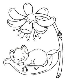 Sliekje digi Stamps: Sleepy mouse