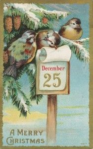 Late Victorian (circa 1900) Christmas postcard with birds, from the Tidbits Trinkets Images blog.