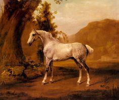 A Grey Stallion In a Landscape, c.1765. #Cavendon Hall