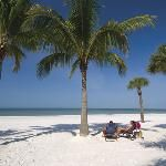 Sanibel Island Tourism: Best of Sanibel Island - TripAdvisor