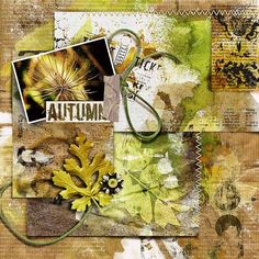 """ AUTUMN"" from the gallery at Real Life Scrapped Created with Captivated Visions products at Scrapbook Graphics Wiser, Not Older {kit} http://shop.scrapbookgraphics.com/wiser-not-older-digital-scrapbook-kit.html A Gesso Of A Mess 03 [Paint Stamps] Mish Mash - Stamp Stash 05  Mish Mash - Stamp Stash 08"