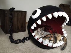 """Funny Cat Bed Mimics """"Chain Chomp"""" from Super Mario Bros. - My Modern Met"""