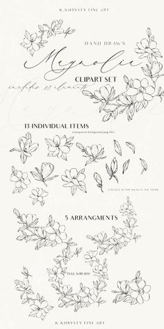 Magnolia Hand drawn Clip Art Set by K Khrysty Fine Art on Graphic Design Trends, Graphic Design Inspiration, Botanical Illustration, Illustration Art, Flower Outline, Drawing Clipart, Invitation Design, Invitations, Magnolia Flower