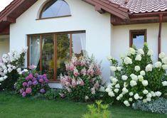 Precious Tips for Outdoor Gardens - Modern Tropical Garden Design, Backyard Garden Design, Garden Landscape Design, Hydrangea Landscaping, Home Landscaping, Front Yard Landscaping, Front Yard Patio, Front Yard Design, Garden Yard Ideas
