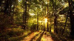 kauniita paikkoja unelmia - imuroi taustakuvia: http://wallpapic-fi.com/maisemia/kauniita-paikkoja-unelmia/wallpaper-23342