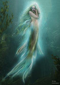 Siren Mermaid, Mermaid Lagoon, Mermaid Fairy, Mermaid Tale, Male Mermaid, Fantasy Creatures, Mythical Creatures, Sea Creatures, Fantasy Mermaids