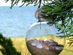 Seashells in ornaments